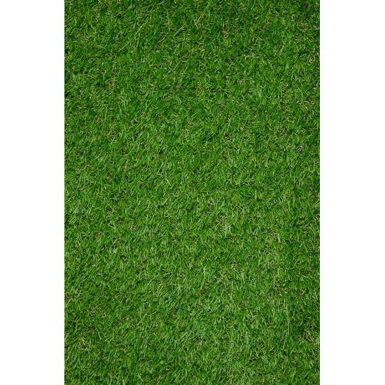 VENICE GRASS 12