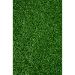 VENICE GRASS 13